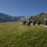 Groupe de randonneurs à Gavarnie