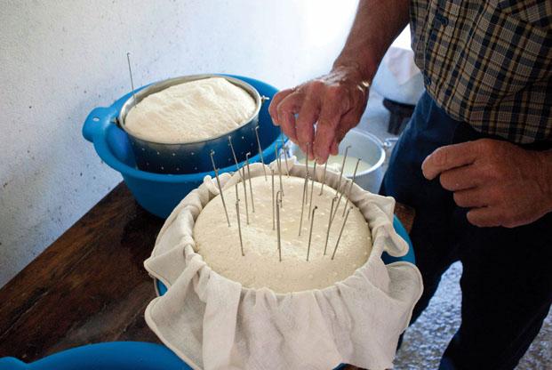 Fabrication du fromage des Pyrénées